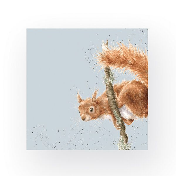 Wrendale Designs Pack of 20 Cocktail Size 'The Acrobat' Squirrel Napkins