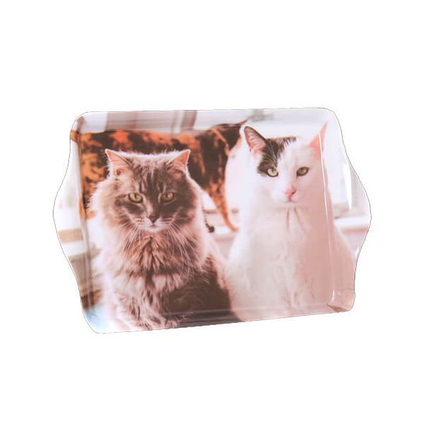 Country Matters Trio Of Cats Trinket Tray