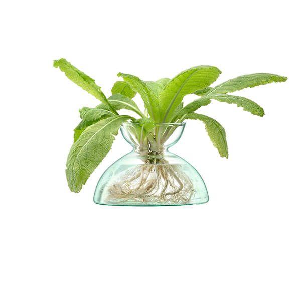 LSA Canopy 9.5cm Vase