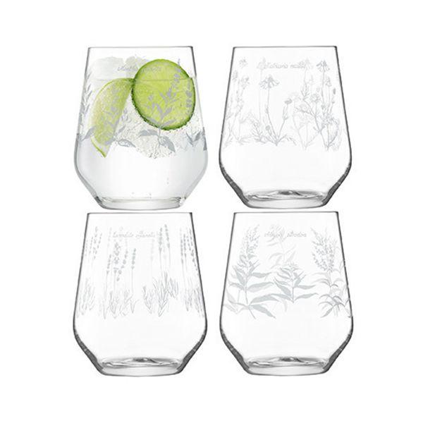 LSA Royal Botanical Gardens Kew Tumbler Glass 450ml Assorted Set of 4