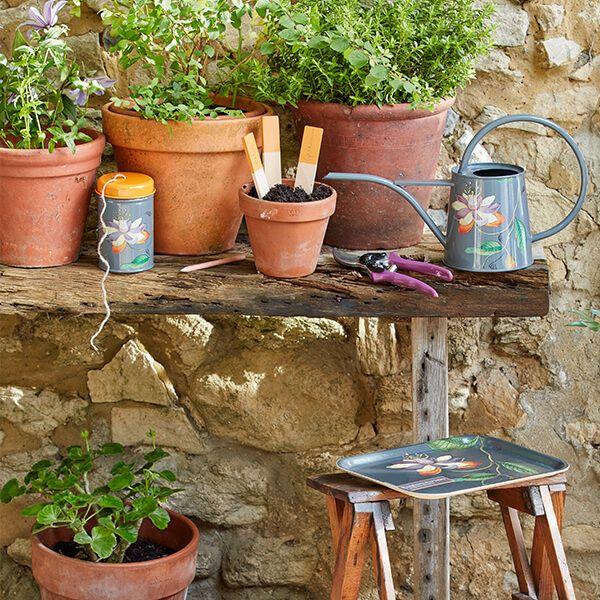RHS Passiflora Wooden Plant Labels