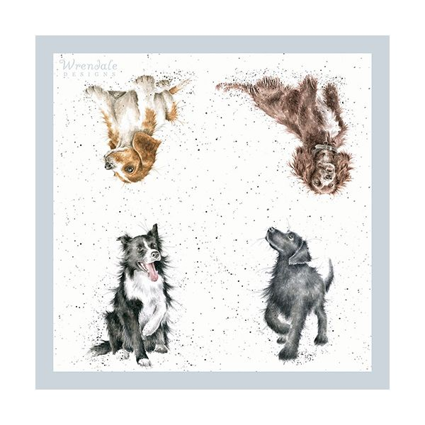 Wrendale Designs Walkies Pack Of 20 Napkins