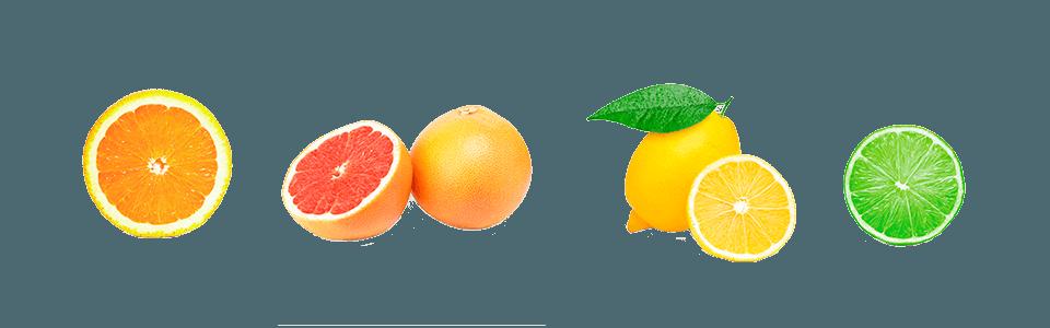 Citrus Juicers Juice